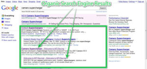organic-search-engine-results